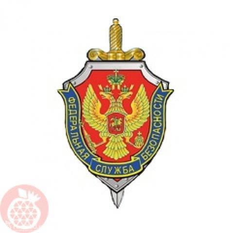 Институт Федеральной службы безопасности РФ
